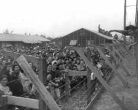 Relocation_of_Japanese_Americans_LG